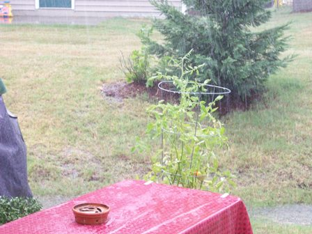 05. Rain, Rain