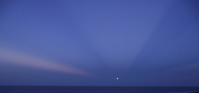 04. Pink Moon