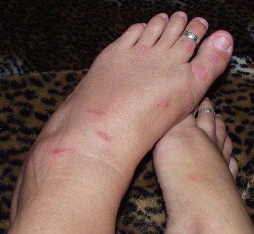 07. Put Your Left Foot In