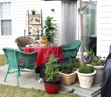06. Umbrella Stand Container Garden & New Chairs