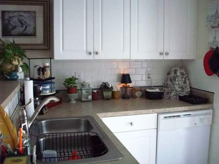 40. Kitchen Sink Area