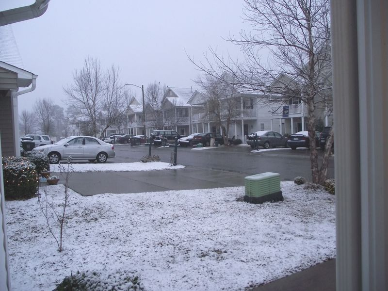 Snow in Raleigh 007
