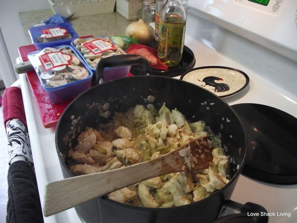 02. Saute chicken & onions in oil-1