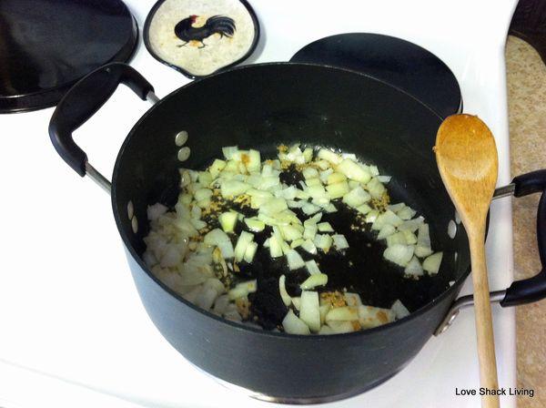 04. Saute onions n'garlic